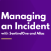 Managing an incident with SentinelOne and Alias